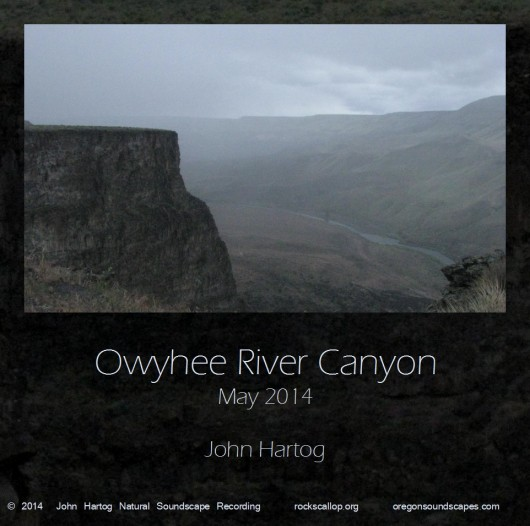 Cover art- image of Owyhee Riverfrom canyon rim.